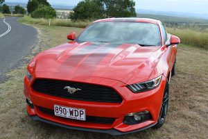 Mustang: Taking A Pony Out For A Spin