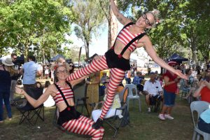 Wine And Food Festival Cancelled