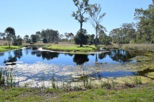 Council Seeks Planning Scheme Input