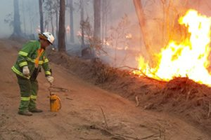 Fire Ban In Gympie Council Area