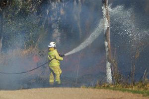 Wetlands Fire 'May Have Been Lit'