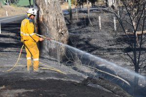 Winds Whip Up Two Fires