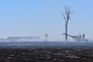 QFES Declares Fire Emergency