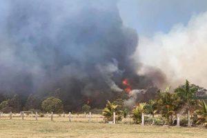 Bushfire Burns Near Kingaroy Homes