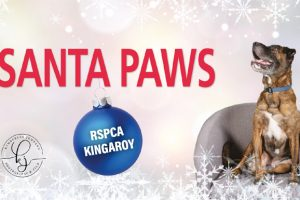 Santa Paws Coming To RSPCA