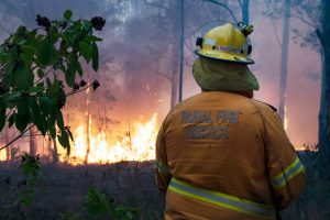 Labor's Secret 38pc Cut To Rural Firies