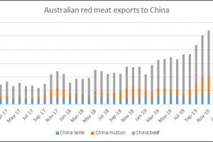 Red Meat Exports Remain Strong