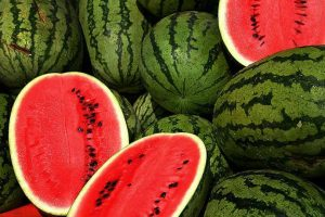 Digital Trial To Track Melons