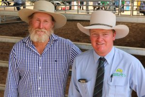 Record Sale For Bunya Bulls