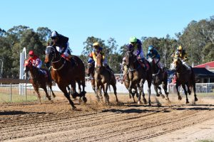 Wondai Races Will Be Patron-Free