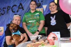 Delicious Way To Help RSPCA