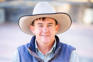 Users Press For Saleyards Upgrade