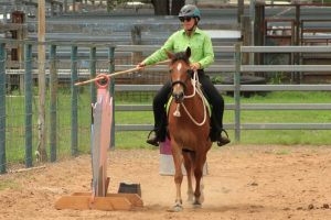 Equestrians Test Their Skills