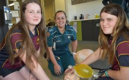 Hands-On Look At Healthy Careers