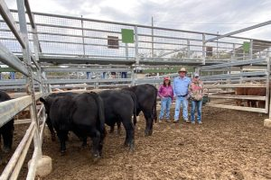 High Demand For Weaners