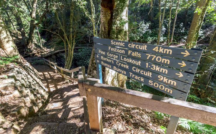 Council Defers Tourism Decision