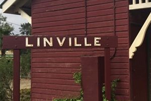 New Toilets For Linville